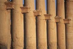 Столбцы большой колоннады, пальмиры, Сирии Стоковая Фотография
