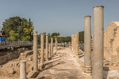 Столбцы и части мозаики от римского периода в Paphos, Кипре стоковое фото rf
