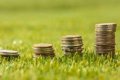 Столбцы монеток на траве Стоковые Изображения