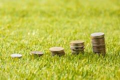 Столбцы монеток на траве Стоковая Фотография