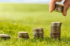 Столбцы монеток на траве Стоковое фото RF