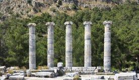 Столбцы древних народов в Priene Стоковая Фотография