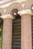 Столбцы с цветками Стоковое Фото