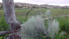 Столбы и ферма загородки стоковое изображение