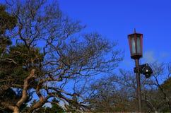 Столб лампы в осени Стоковая Фотография
