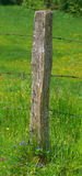 Столб загородки Стоковые Фотографии RF