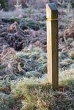 Столб знака леса Стоковые Фото