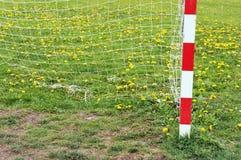 Столб и сеть цели футбола весной стоковая фотография
