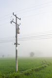 Столб электричества в полях риса Стоковые Фото