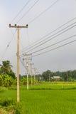 Столб электричества в полях риса Стоковая Фотография