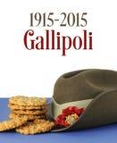 Столетие Gallipoli австралийца, WWI, апрель 1915, дань стоковое изображение rf
