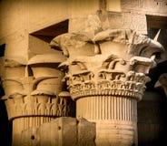 Столицы столбцов на Kom-Ombo (Египет) Стоковая Фотография