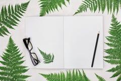 Стол офиса с листьями папоротника, опорожняет открытую тетрадь, черные eyeglasses и взгляд сверху карандаша Плоский дизайн положе Стоковые Изображения RF