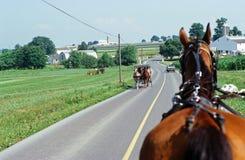 Страна Амишей, Ланкастер, PA Стоковое Изображение