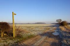 Страна идя в зиму Стоковые Фотографии RF