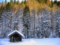 страна чудес зимы ландшафта стоковая фотография rf