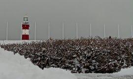Страна чудес зимы на сапке Плимута стоковые фото