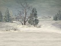 страна чудес зимы предпосылки Стоковые Фотографии RF