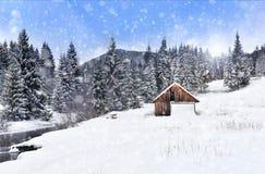 Страна чудес зимы с елями evergreen украшения рождества цветет вал красного цвета poinsettia приветствиям стоковое изображение