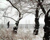 страна чудес york зимы города новая Стоковые Фотографии RF