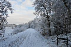 Страна чудес зимы Стоковые Изображения
