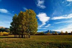 страна Стоковая Фотография RF