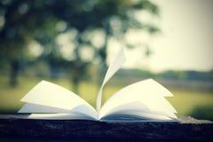 Страница книги летания на деревянной таблице (винтажная предпосылка) Стоковые Изображения RF