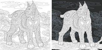 Страница книжка-раскраски с дикой кошкой бесплатная иллюстрация