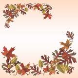 Страница памятки листьев осени иллюстрация вектора