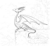 Страница расцветки дракона Контур дракона для книжка-раскраски Стоковое Изображение