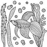 Страница расцветки рыб Стоковые Изображения RF