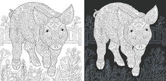 Страница расцветки свиньи иллюстрация штока