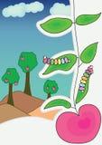 страница eps яблока Стоковые Изображения RF