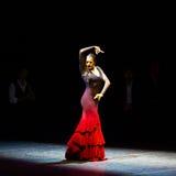 Страницы Марии, испанский танцор фламенко Стоковые Фото