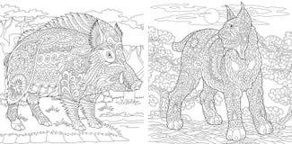 Страницы расцветки Книжка-раскраска для взрослых Крася изображения с вспыльчивым и диким кабаном Antistress freehand чертеж эскиз иллюстрация штока
