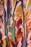 Странное применение пастелей масла Стоковое Изображение