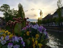 страсбург Стоковые Фото