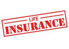 Страхование жизни иллюстрация штока