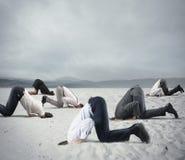 Страх кризиса с предпринимателями любит страус стоковые фотографии rf