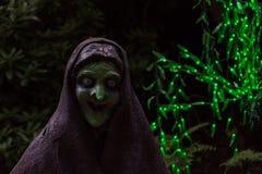 Страшная ведьма в темной предпосылке с зелеными fairy светами Стоковое фото RF