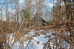 Страшная кабина в древесинах во время дневного времени стоковое фото
