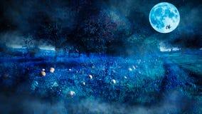 Страшная сцена ночи хеллоуина с полем тыквы и ведьмой летая как силуэт перед полнолунием стоковые фотографии rf