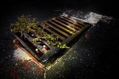 Страшная тварь в стоке Стоковая Фотография RF