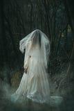 Страшная уединённая невеста в туманных древесинах стоковое изображение rf