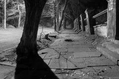 Страшная улица в ноче стоковые изображения rf