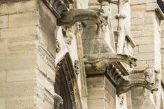 Страшные горгульи Нотр-Дам, Парижа, Франции Стоковые Фотографии RF