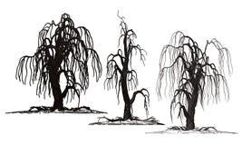 Страшные страшные изолированные деревья смерти хеллоуина Стоковая Фотография
