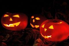 Страшные тыквы хеллоуина на черной предпосылке Страшный накаляя фокус или обслуживание сторон Стоковое Изображение RF