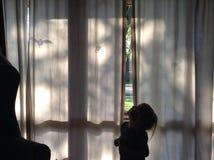 Страшный занавес Стоковая Фотография RF