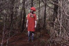 Страшный злий клоун в древесинах Стоковые Фото